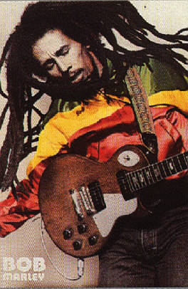 Bob Marley The Wailers Survival